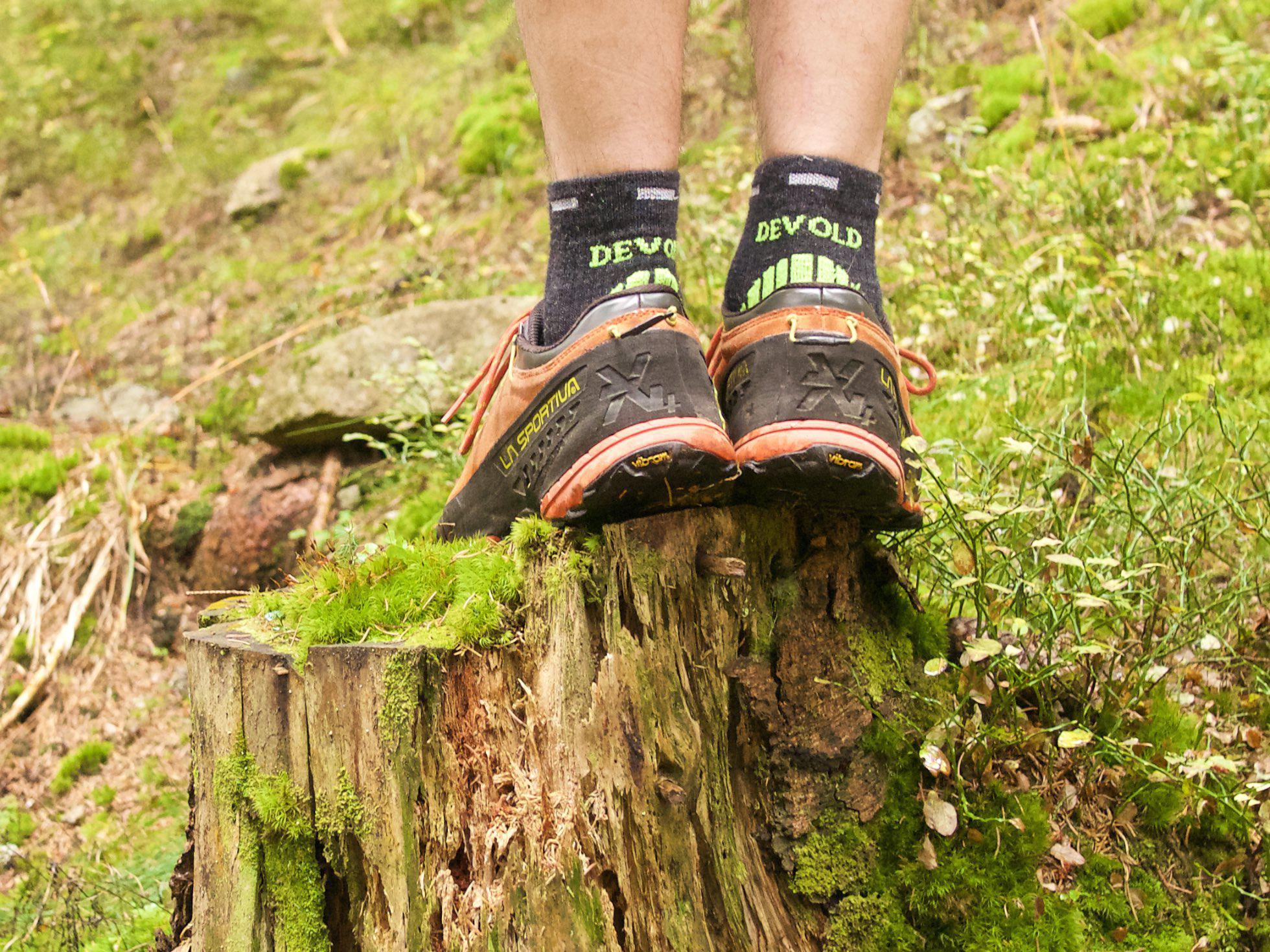 5e9cde41b4 Recenzia  Ponožky Devold Energy