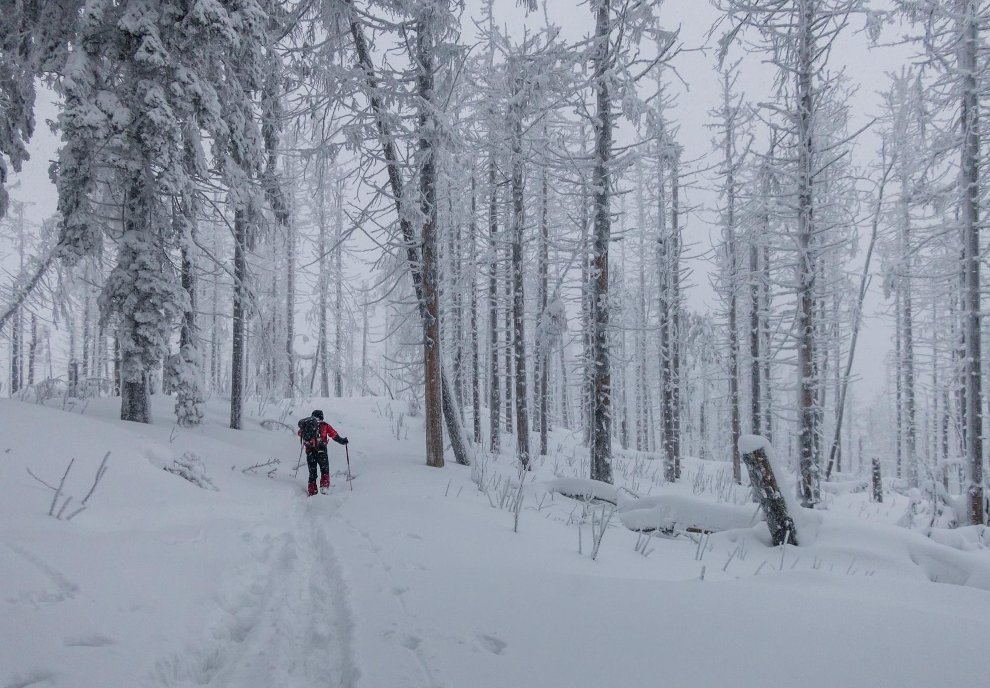 fbf14a0f396ed Bežky: Ako som sa o život plahočil v snehu na Polome | HIKING.SK