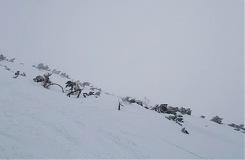 004f0c6b5 Príbeh Zápis z denníka skialpinistu Ráno 2. decembra 2015 robím kontrolu  stavu počasia letmým pohľadom cez okno. Nič nevidím, po čase si uvedomujem,  ...